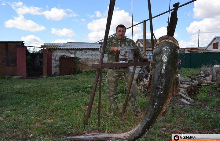 Иловлинского района рыбалка