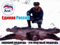 edros_bear2.jpg