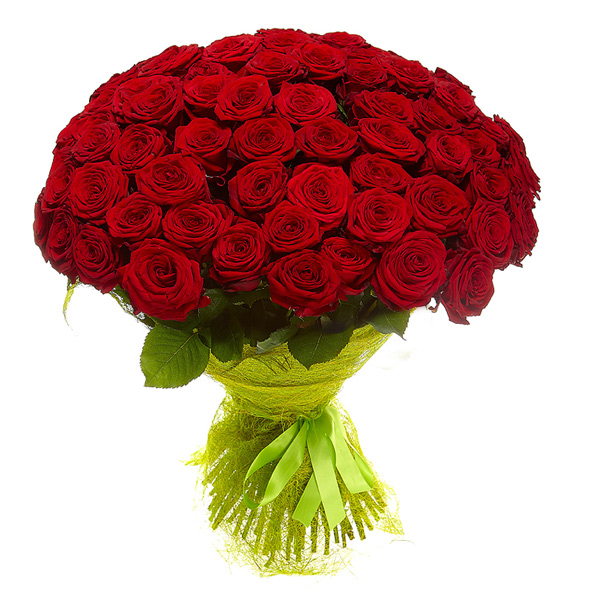 101-red-rose.jpg