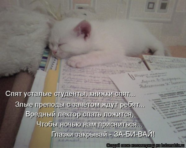 54020864_x_757d7dff.jpg